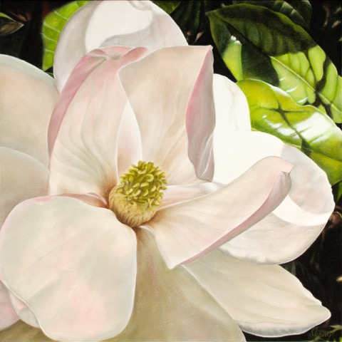 Realistic Painting of magnolia flower
