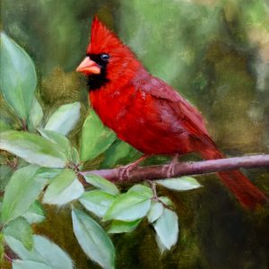 Painting of Red Cardinal, Rose Tanner, Forest's Surprise, Oil on Linen, 14 x 11