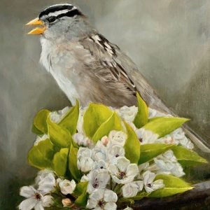 Painting of a house sparrow, Rose Tanner, Spring Song, Oil on Linen, 20 x 16