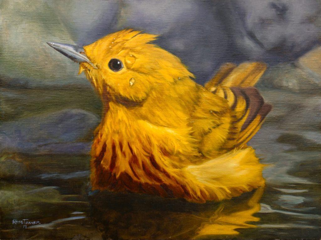 Yellow Warbler, bird painting, bird bath