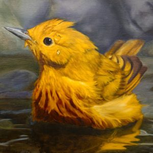 Yellow Warbler, bird painting, bird bath